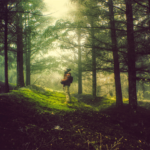 """Vencedores do concurso de fotografia """"Desfruta do bosque com PEFC"""""""