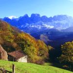 FSC mejorará la salud de los espacios naturales gallegos y asturianos